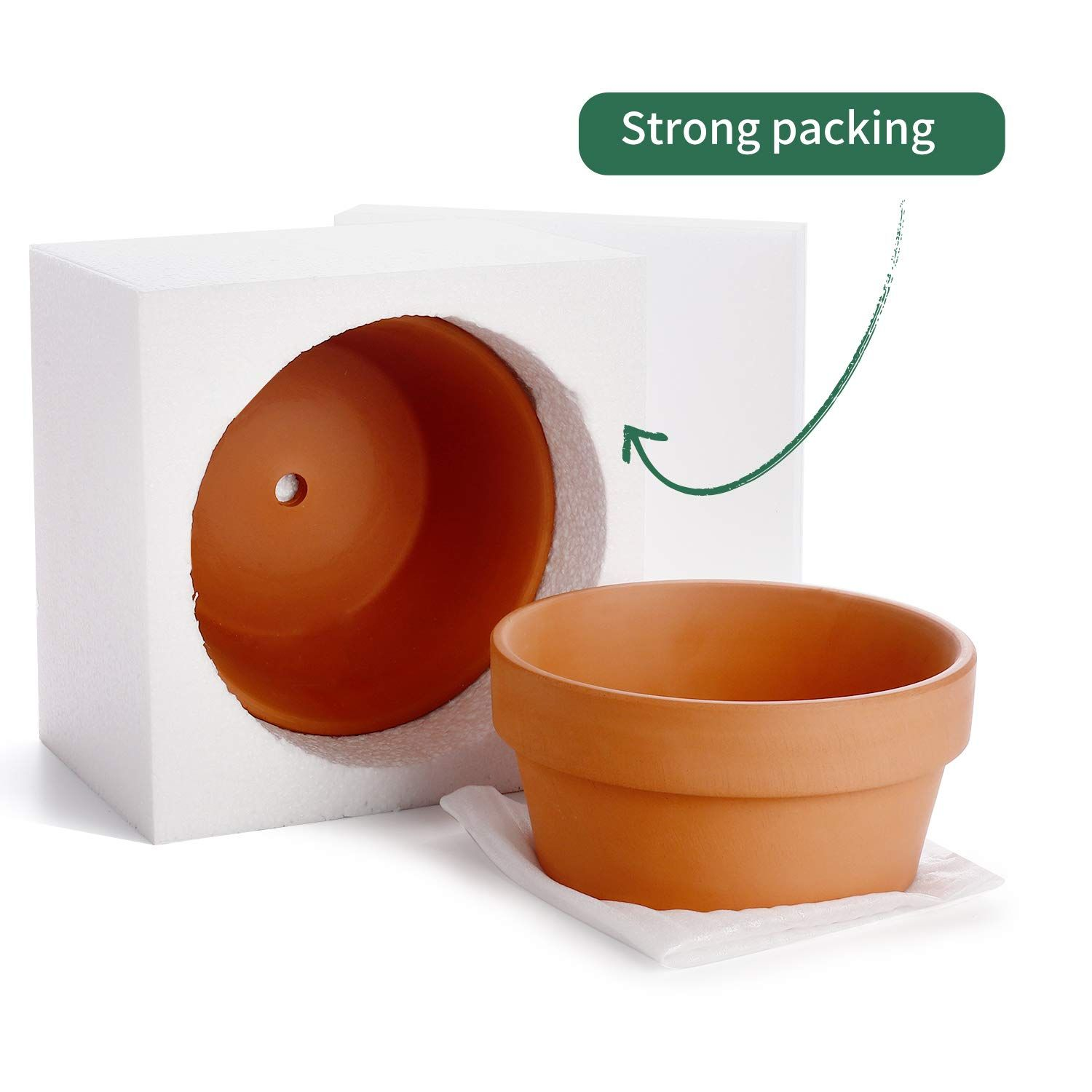 Potey Terracotta Shallow Planters For Succulent 6 1 Inch Cactus Plant Containers Indoor Garden Bonsai Pots With In 2020 Shallow Planters Container Plants Bonsai Pots