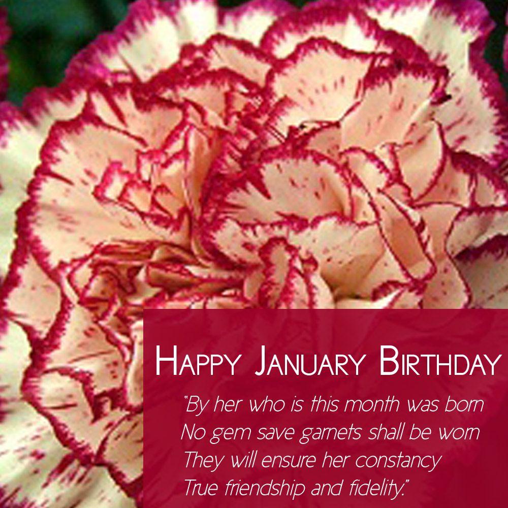 Happy january birthday from freytags florist freytagsflorist happy january birthday from freytags florist freytagsflorist carnations birthflower izmirmasajfo