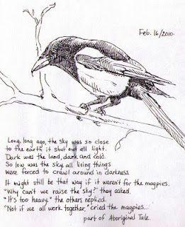 Barbara Wanhill - magpies