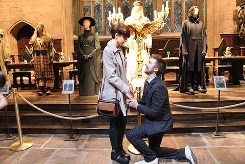 Dressed like the Doctor, proposing in Hogwarts. I would die of nerd-out before the wedding ever happened.