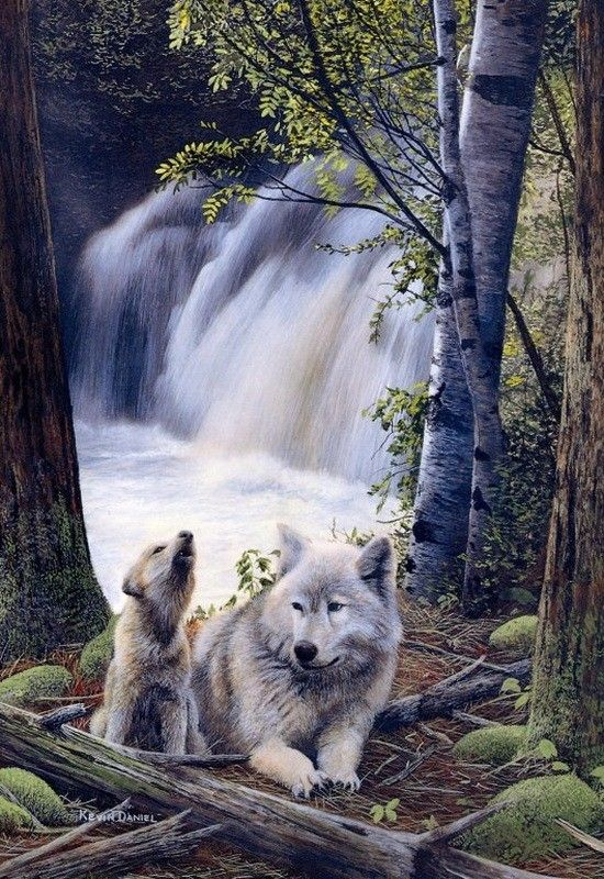 Mom Amp Pup Kevin Daniel Russian Art Pinterest Wolf