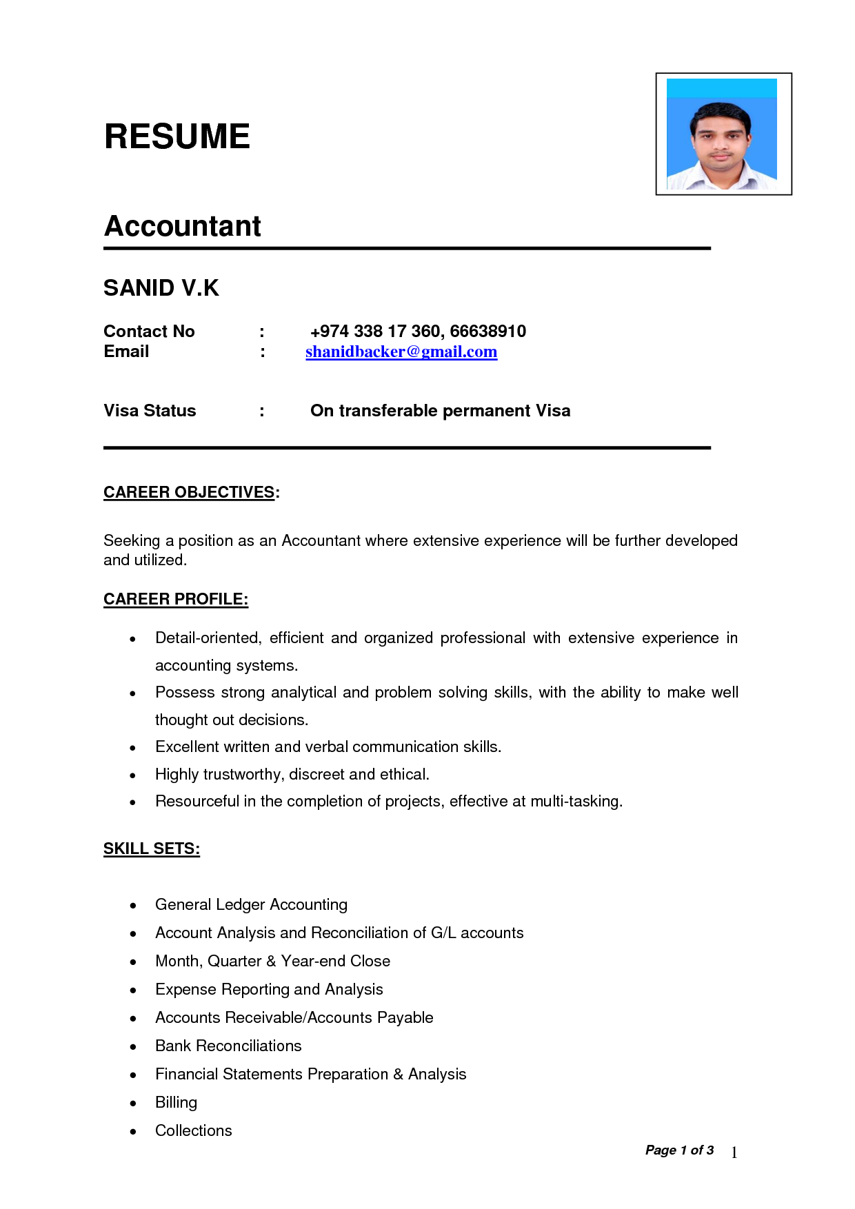 India Accountant resume, Basic resume, Resume format