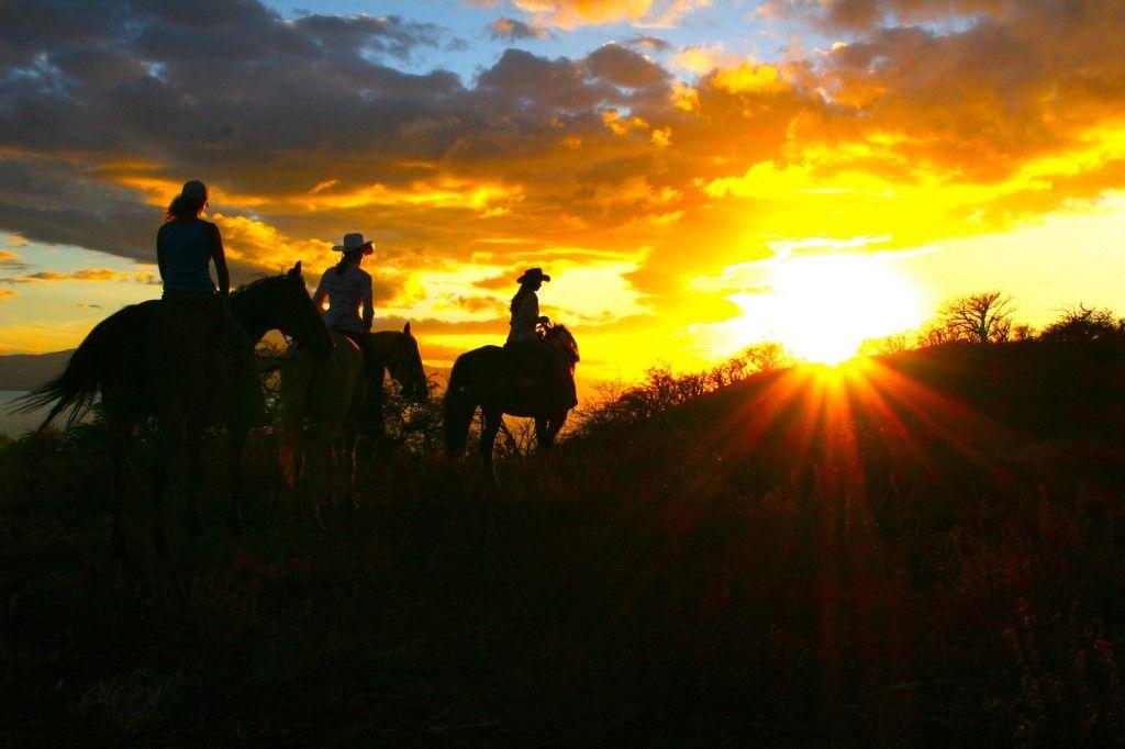 equitrekking.com Rainas Ex-Racehorse Blog | Horseback
