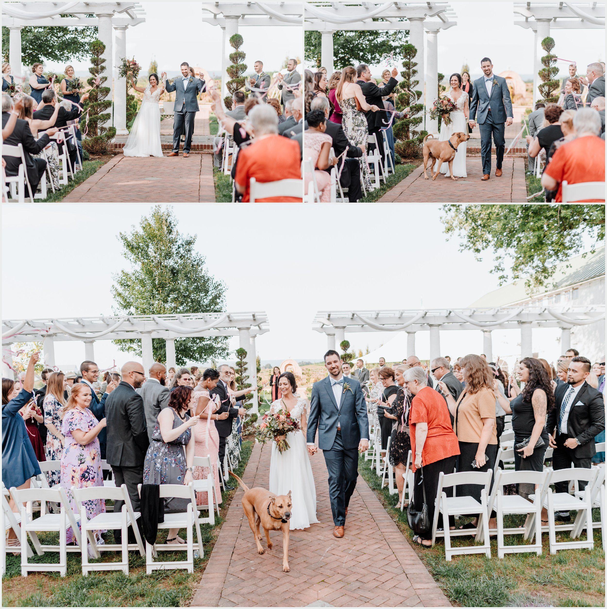 Wedding Flowers Lancaster Pa: Wedding Moments, Photography, Designer