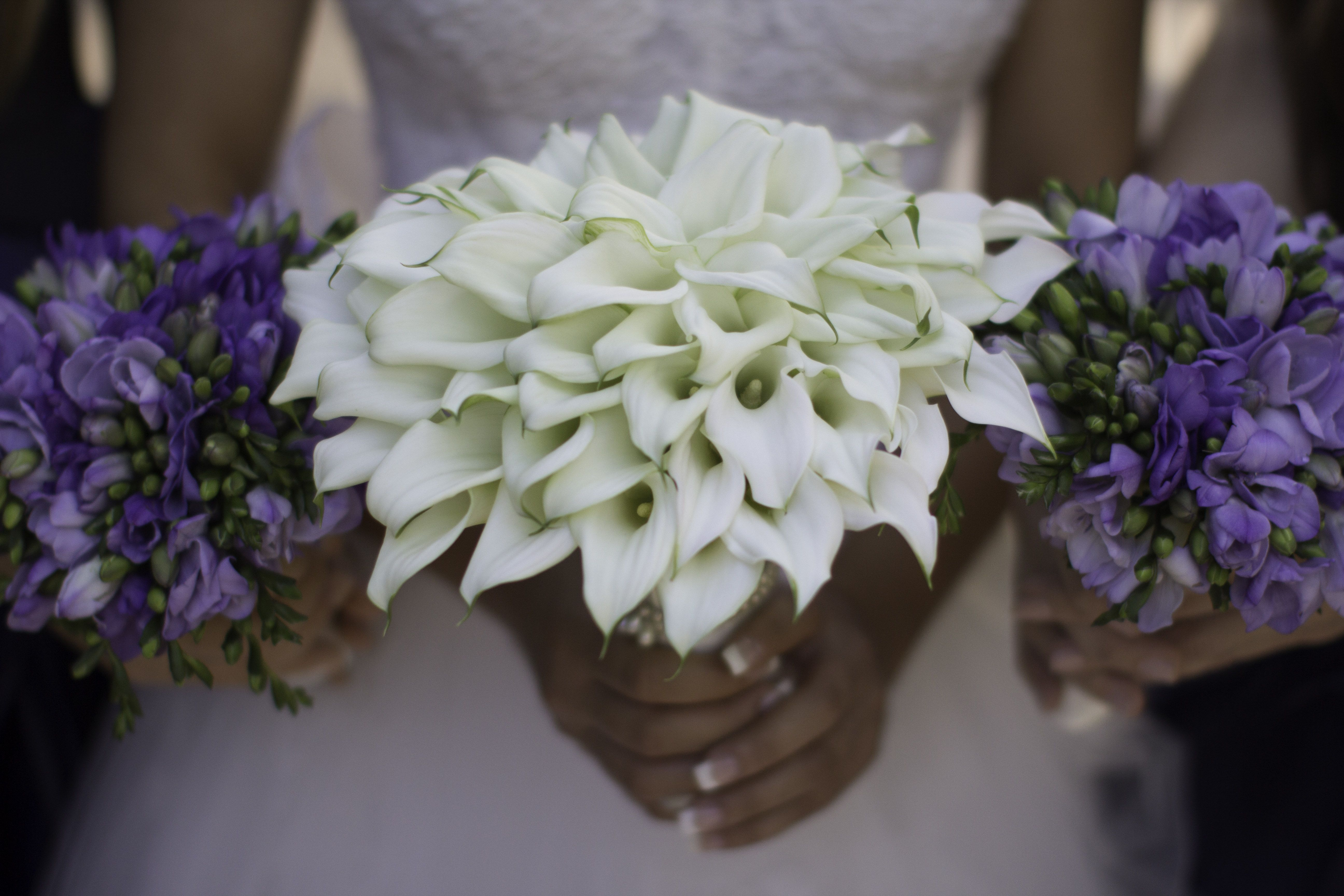 Tawni's Bridal Bouquet and Bridesmaids!