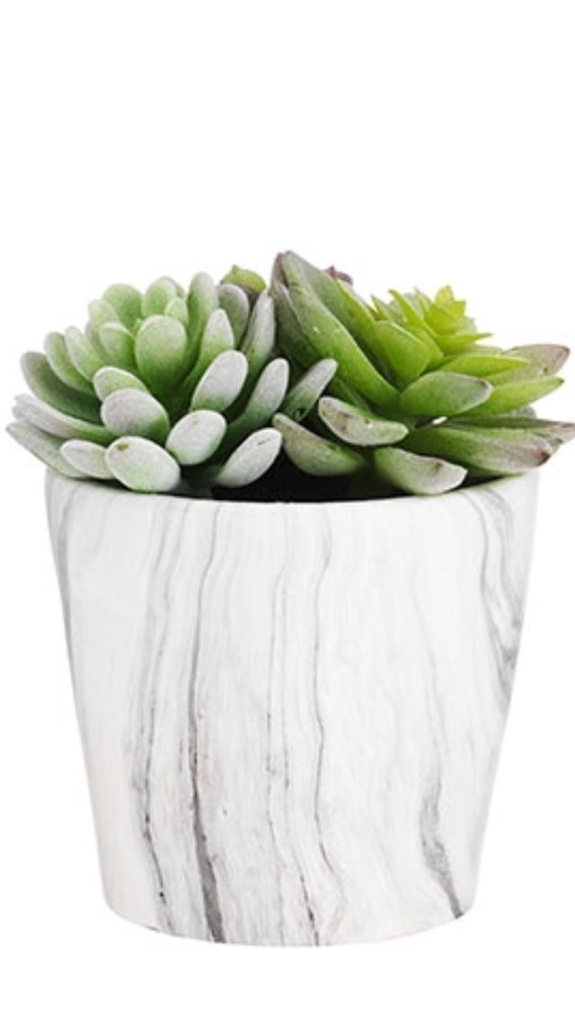 Faux Succulent In Marble Pot Artificialplantslivingroomindoorpalms Artificialplantsoutdoor