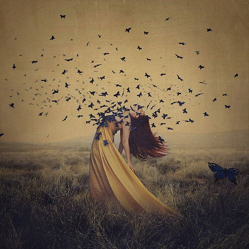 the sound of flying souls   Flickr - Photo Sharing!