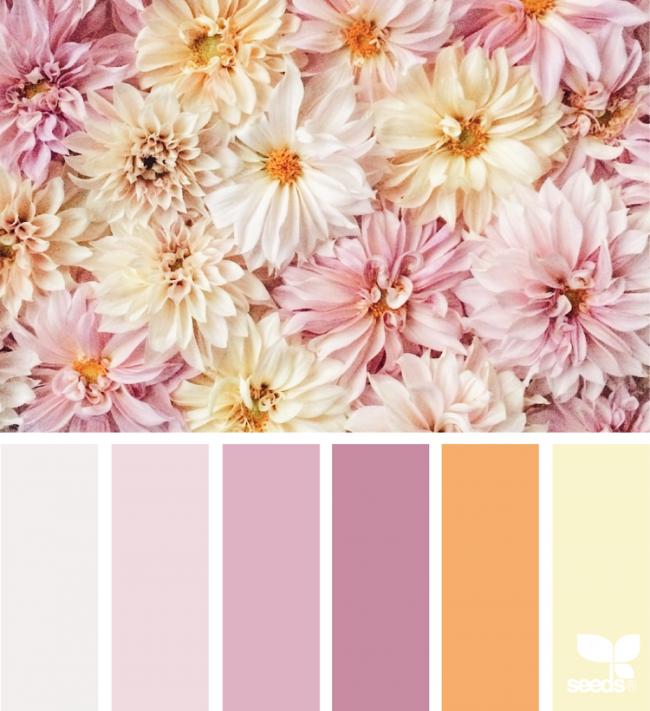Altrosa Farbe Kombinieren Warme Farben Palette Filz In 2019