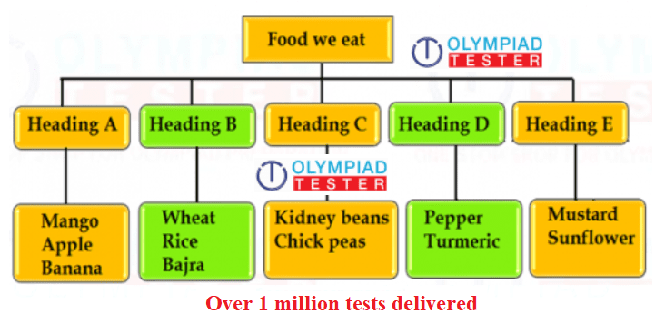 Free online Class 4 NSO, Science Olympiad Sample test on Food and