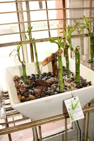 fuentes de agua caseras para interiores - Buscar con Google Jardin