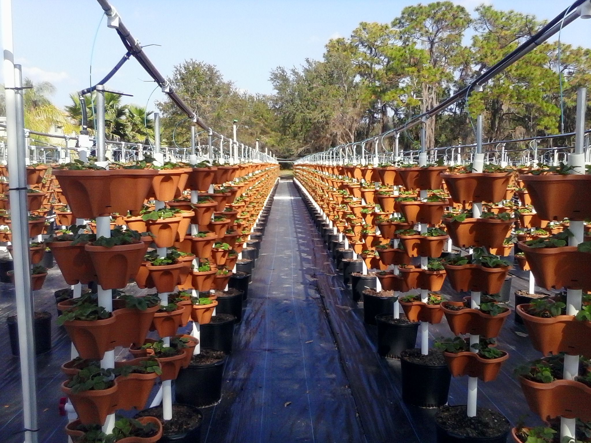 Self Watering Stacking Planter Self Watering Planters 400 x 300