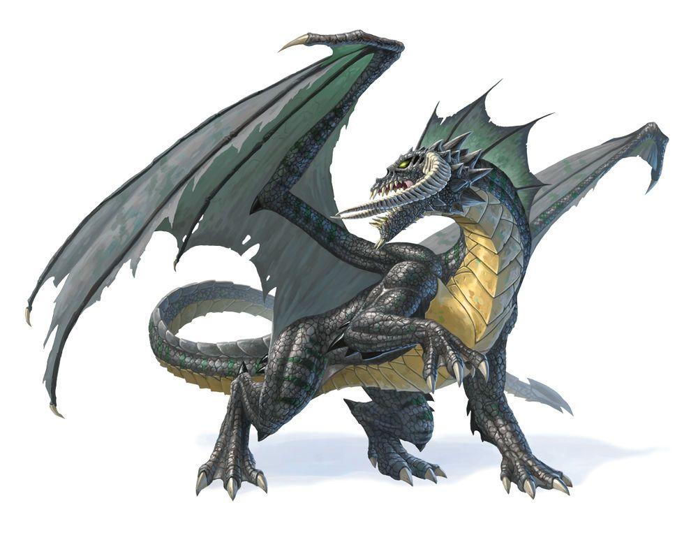 Black dragon in 2019   Starlight   Dragon, Chromatic dragon, Dragon girl