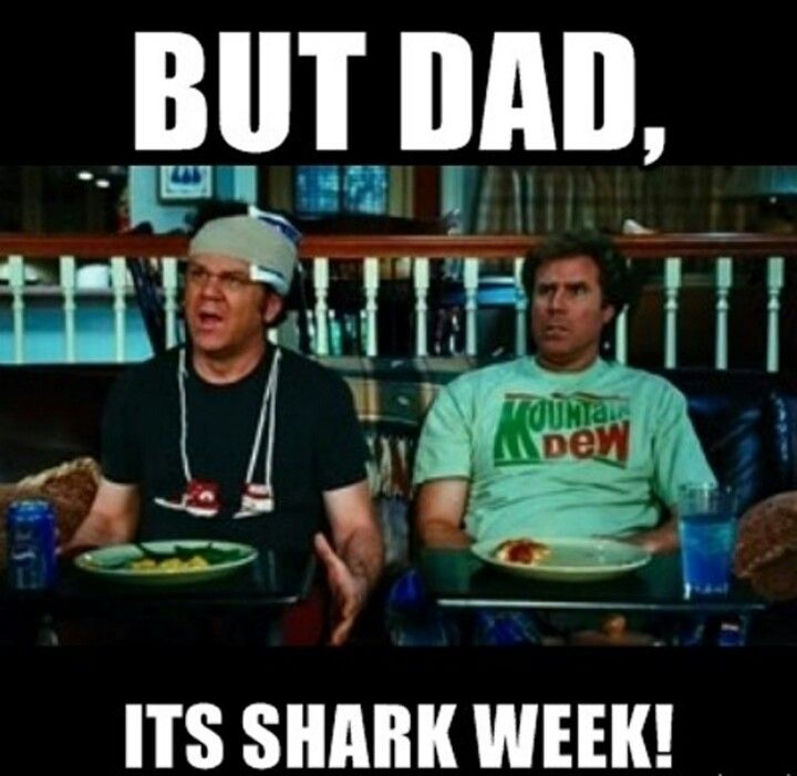Pin By Billy Overstreet On Movies Step Brothers Shark Week Classic Comedies