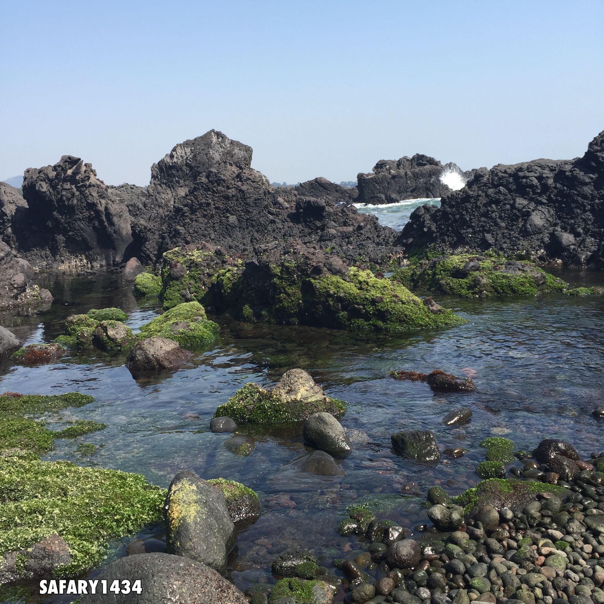 الى متى ننتظر أن يغير واقعنا شخصا ما أو معجزة ما كفانا اوهاما لان يتغير شىء مالم تكن إرادة التغيير بداخلنا تصويري للصخور البركانية Water Outdoor River