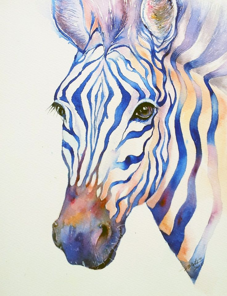 Artfinder Intense Zebra By Arti Chauhan Watercolor Painting