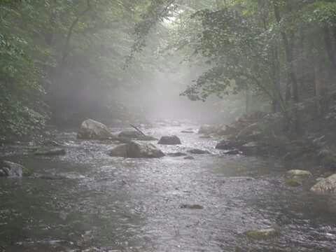 Rain on the river   Smell of rain, Rainy days, Love rain