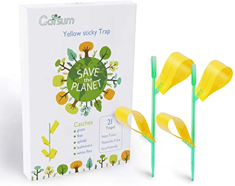 Garsum Insect Trap Yellow Houseplant Sticky Stakes Traps Fly Glue Fungus Gnats Trappers,21 Trap 7 Stakes #gnats