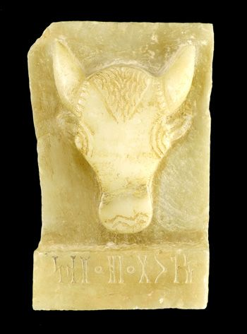 This stele, or carved and inscribed stone slab, depicts the head of a bull. A number of similar stelae have been excavated in Yemen at the site of Timna', the ancient capital of the kingdom of Qatab¯an (ca. 500-100 BCE), where they were dedicated in cult buildings that served a funerary purpose.