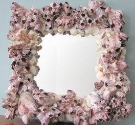 Barnacle mirror :)    Beach Themed Bedrooms