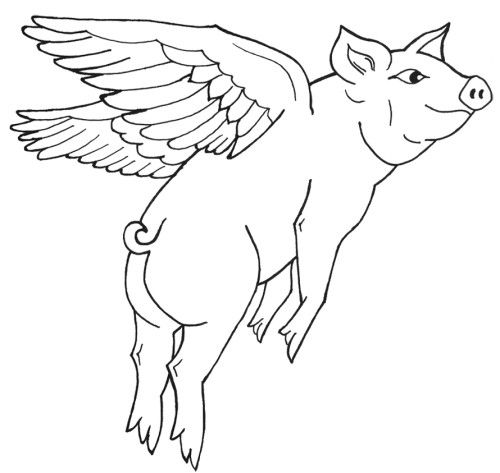 Flying Pig Coloring Pages Cartoon Clip Art Flying Pig Drawing