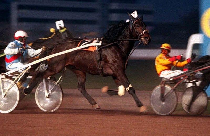 Hilversum, 1995. Pikeur Frans Gorter (r) kijkt om naar Ad Suykerbuyk op de laatste meters van de race. Gorter won de Grote Stayersprijs met zijn paard Astor Are. Foto door Arthur Bastiaanse.