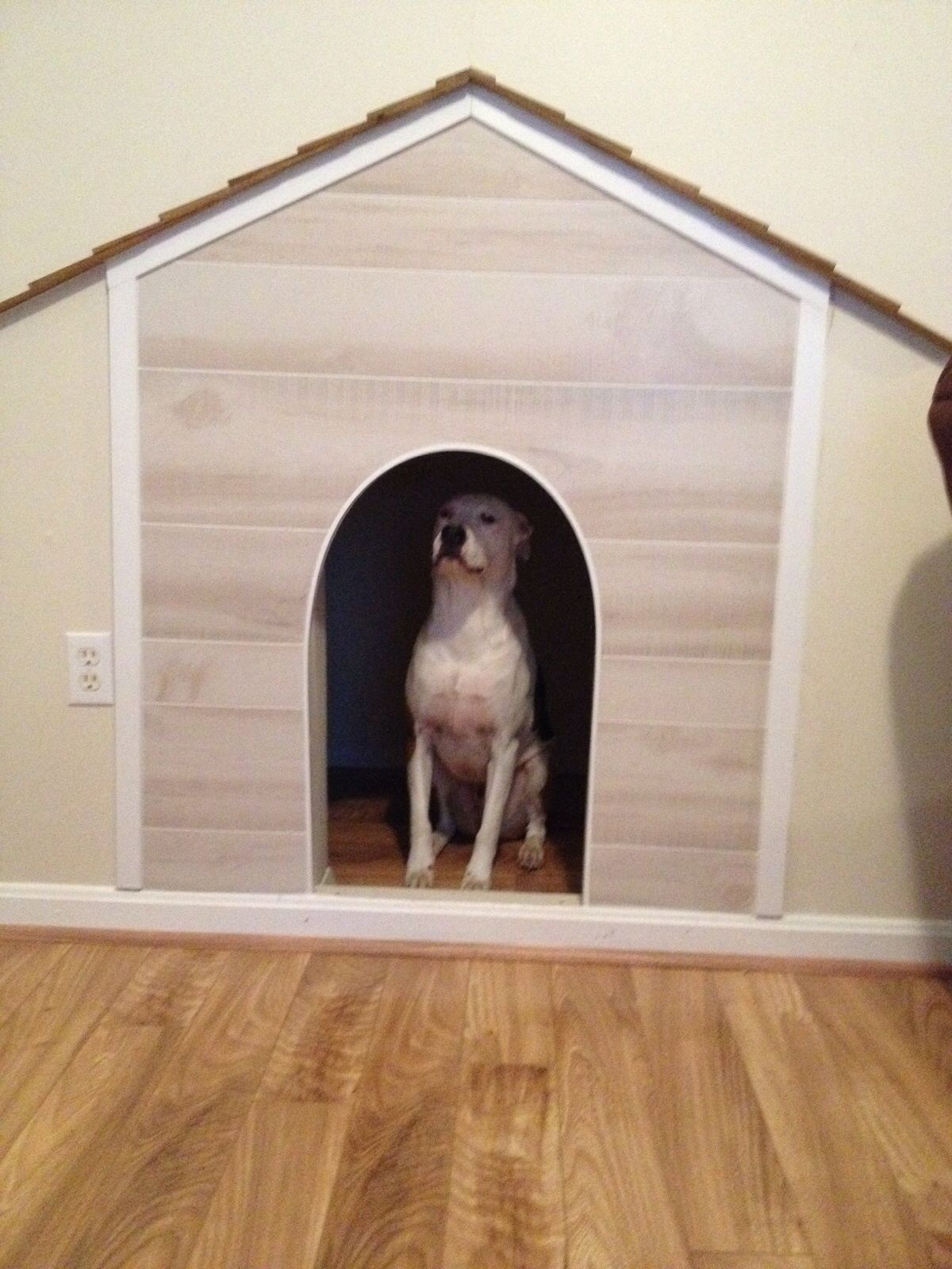 Indoor dog house Used the space under the stairs gutted it out