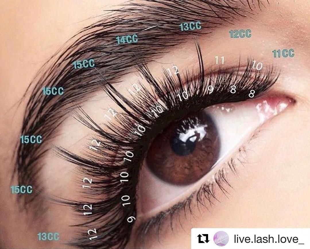 "Best Eyelash Supplier_ Angela on Instagram: ""Amazing lash map"