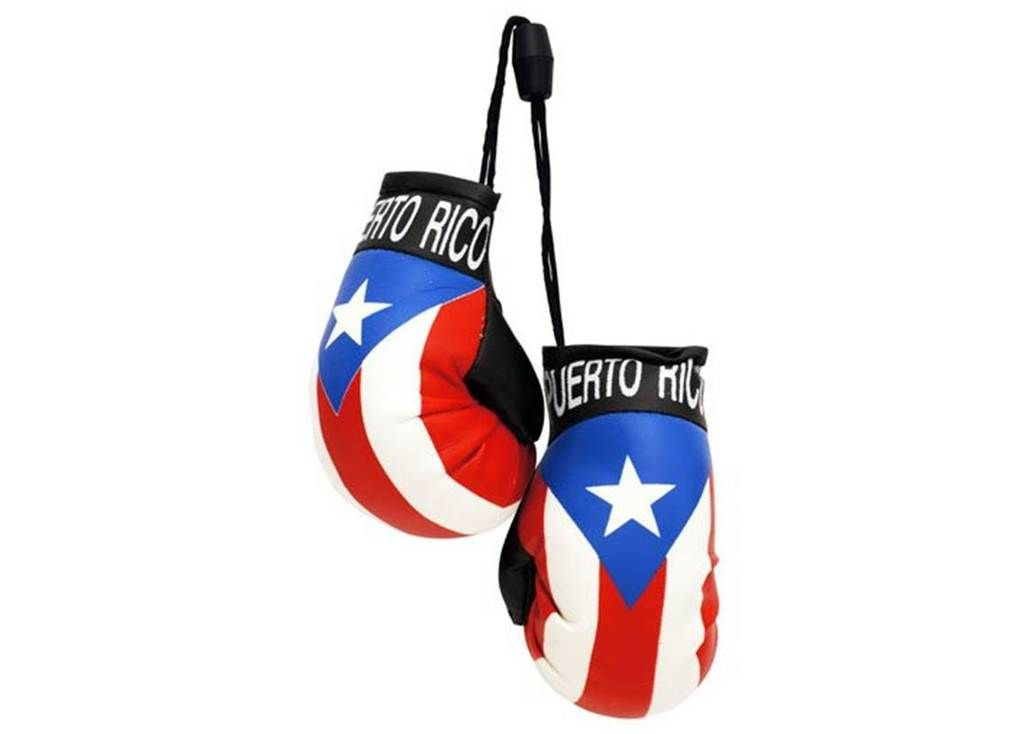 Mini Boxing Gloves Hang-On Car Mirror International Sport Gifts