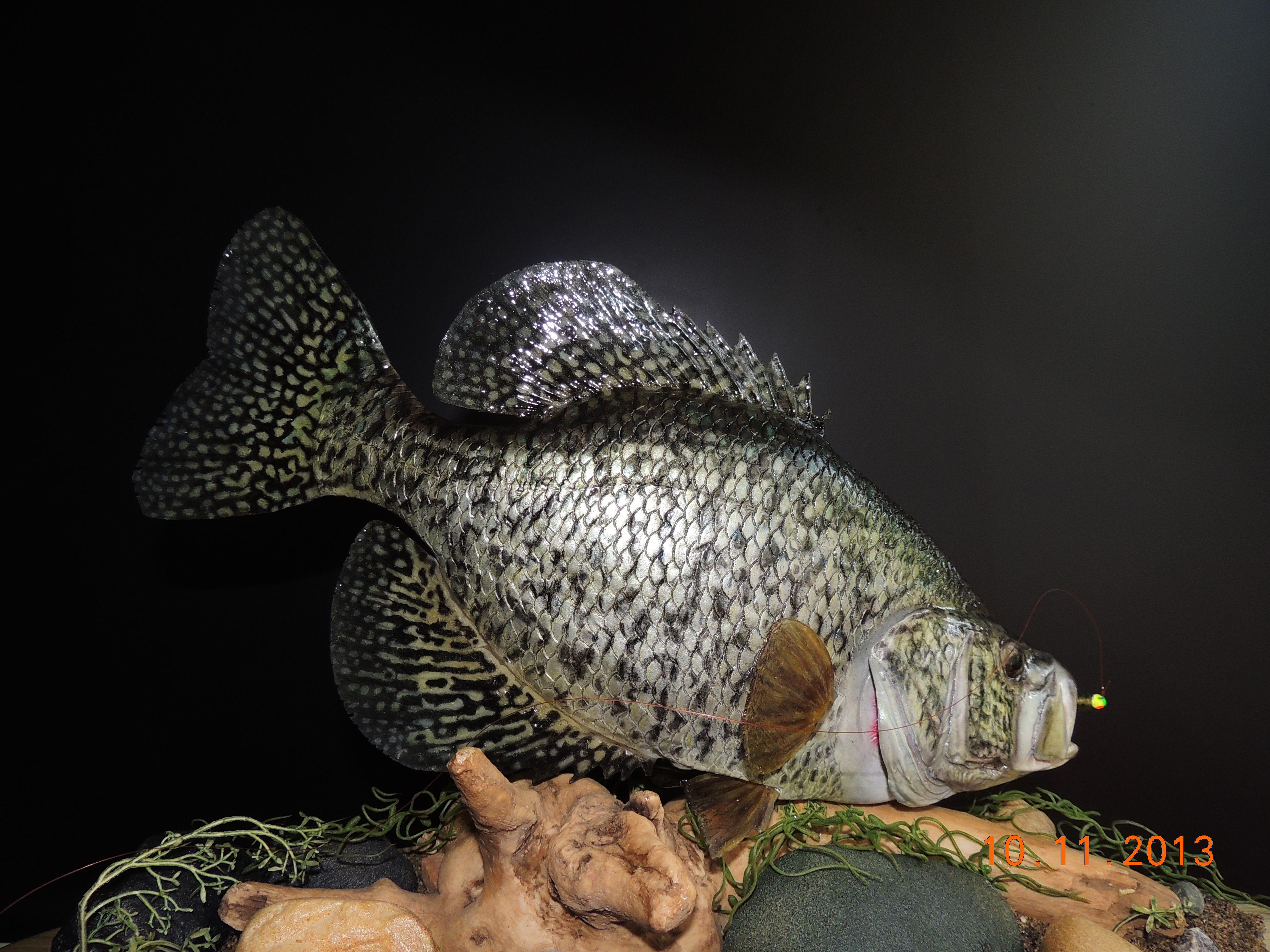 Fish mount fish replica taxidermy home d cor black for Replica fish mounts