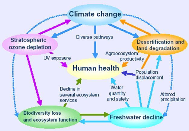 Is climate change human driven