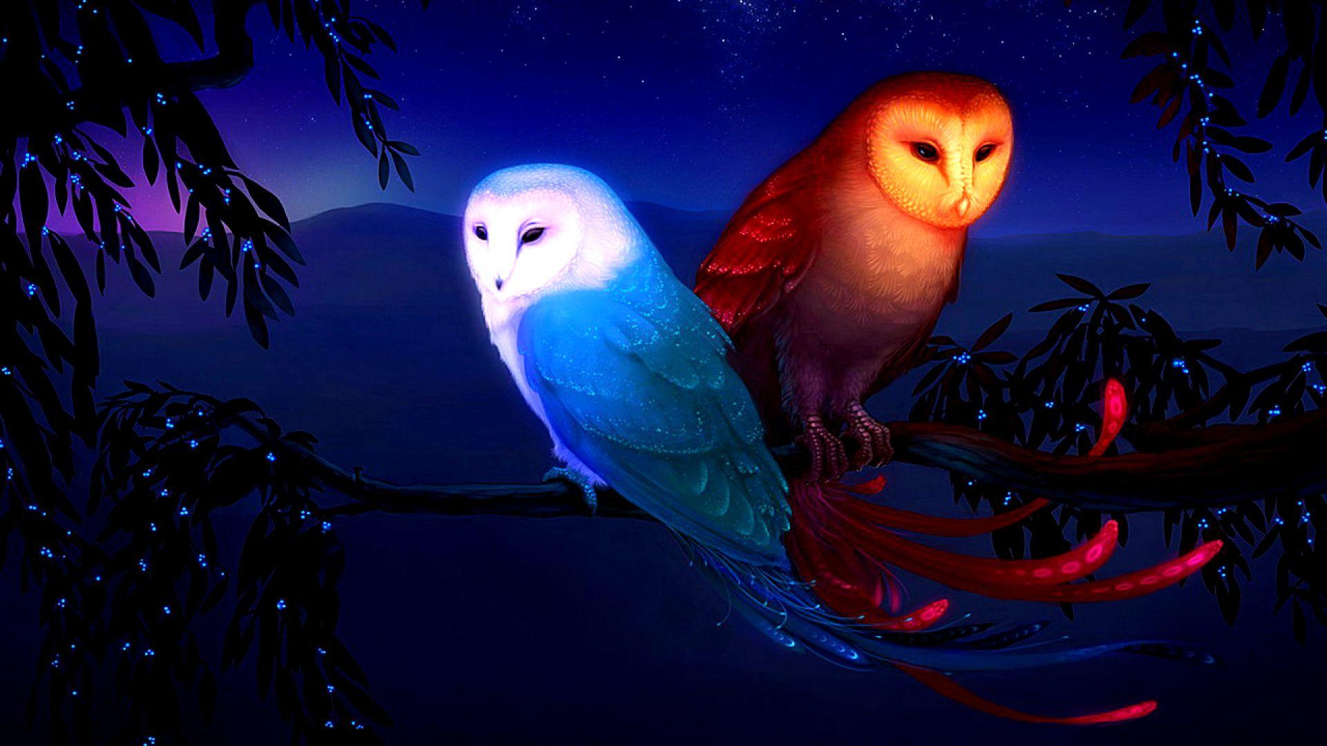 Hola Amigos Aca Les Dejo Unos Fondos De Pantalla En Muy Buena Calidad Les Aclaro Cuando Digo Suerte Es Porque Según Dicen S Owl Wallpaper Owl Spirit Animal Owl