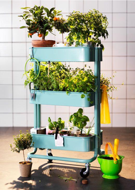 Mobiel kruidentuintje jardín Pinterest Decoracion terraza - Decoracion De Terrazas Con Plantas