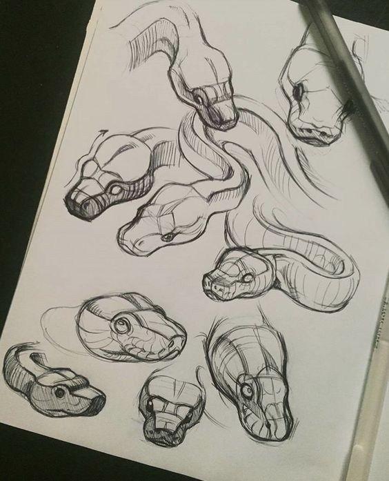 14 Bleistiftzeichnungsideen für Reptilien – #Bleistiftzeichnungsideen #für #Re…