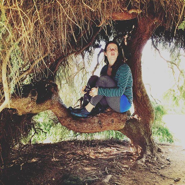 http://electroosmosisltd.co.uk  #spruce #shelter #tree #sprucetree #picea #girl #sitingonbranch #branchbench #branch #bench #kew #kewgardens #royalbotanicgardens #london #walk #weekend #beautynature #nature #garden #ladyonthetree #ontree #romantic