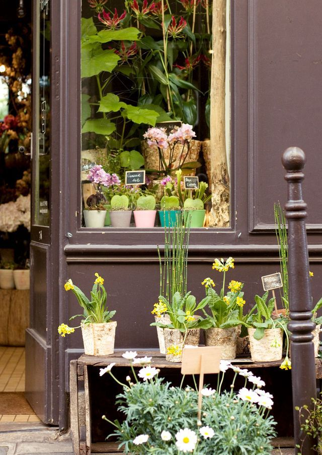 TOP 5 PARIS FLOWER SHOPS SPRING IN THE CITY (Lobster and