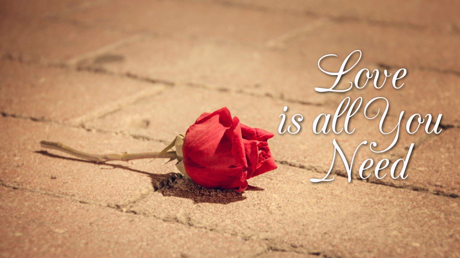Google Image Result For Http Www Baltana Com Files Wallpapers 2 Love Is All You Need Quotes Hd Wallpaper 05793 Jpg Romantic Messages Love Is All Need Quotes