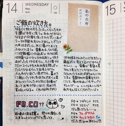 hobonichi | Day's