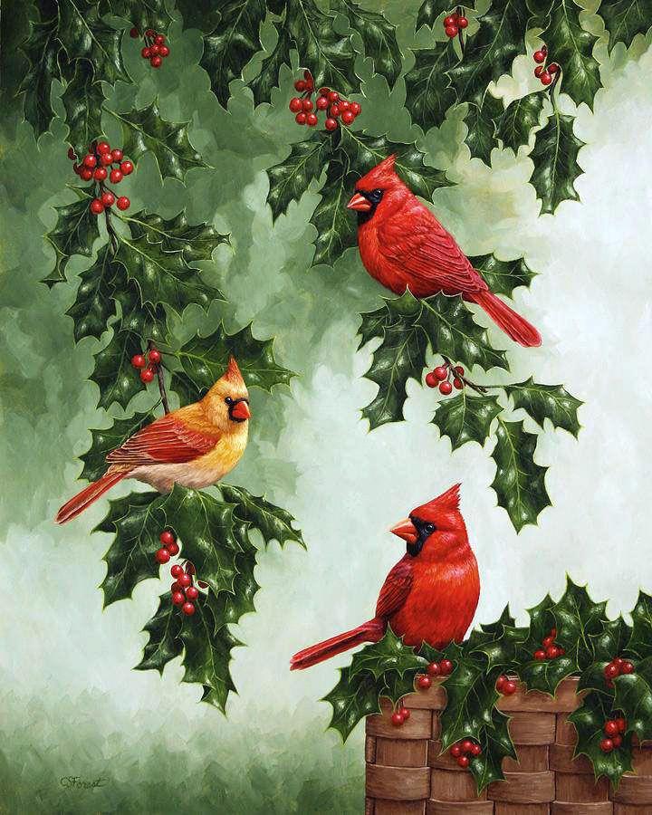 что картинки новогодние с птичками племени