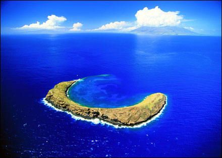 Molokini crater, great dive site