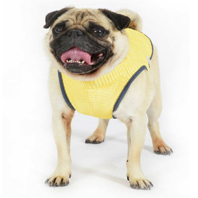 Buy Online Pet Supplies Pet Shop Rspca Pet Warehouse Worldforpets Petshoponline Pet Warehouse Pet Shop Pet Supplies