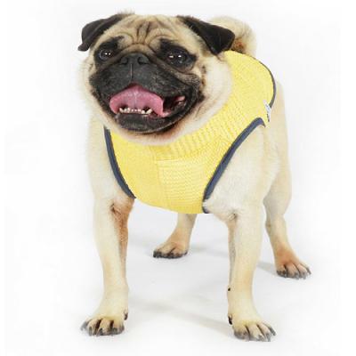 Buy Online Pet Supplies Pet Shop Rspca Pet Warehouse Worldforpets Petshoponline Pet Warehouse Pet Shop Pet Supplies