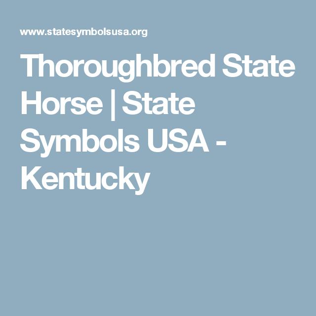 Thoroughbred State Horse State Symbols Usa Kentucky Kentucky