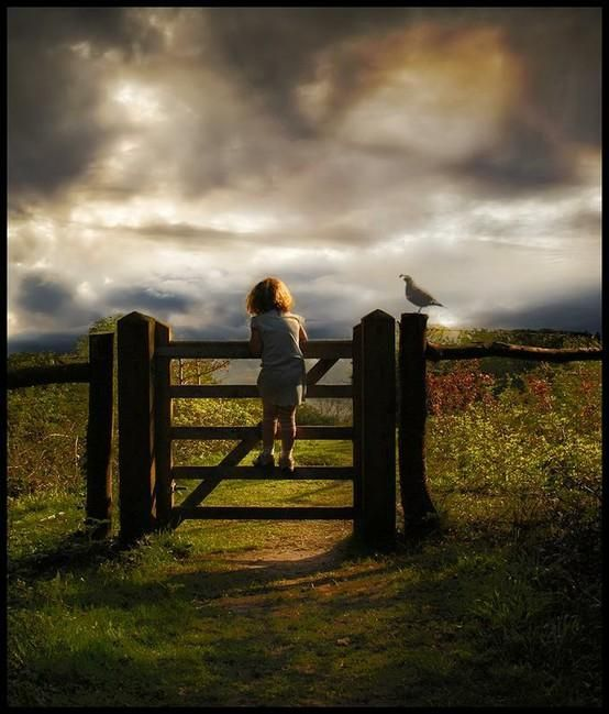 behind the gate