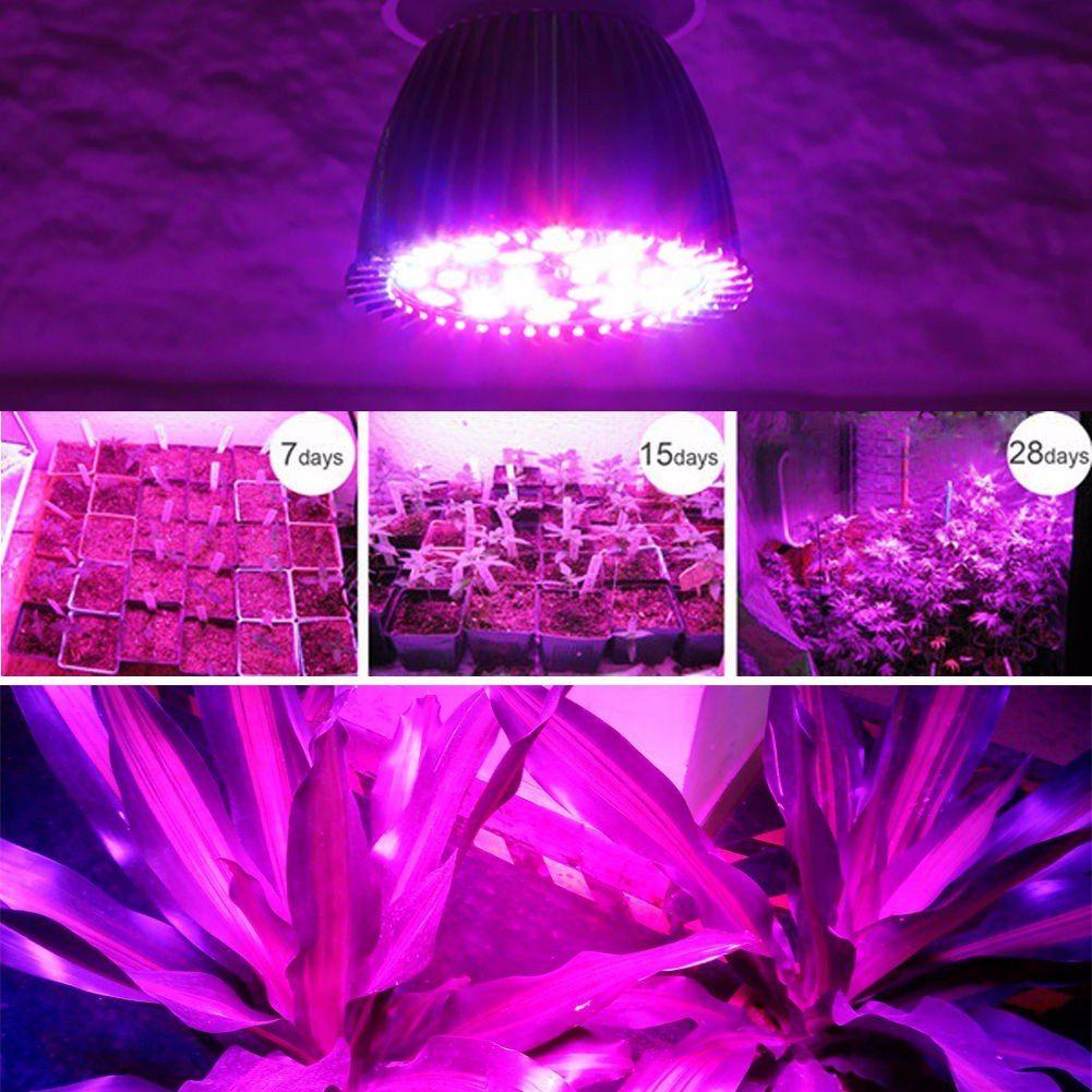 Led Full Spectrum Lights Led Grow Lights Grow Lights Grow Lights For Plants