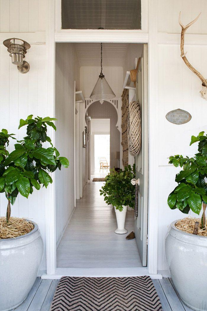 hallway with plants