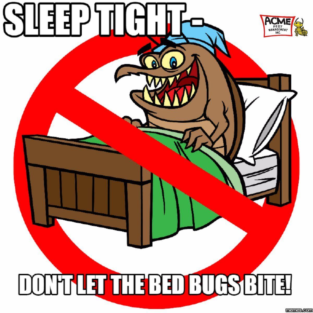 Acme Pest Management Inc's Bed Bugs Control Pest control