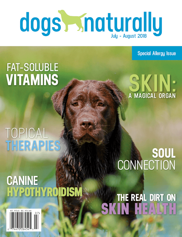 Dogs Naturally Magazine Save 50 Opt Ins Only Dogs Naturally Magazine Dogs Dog Health