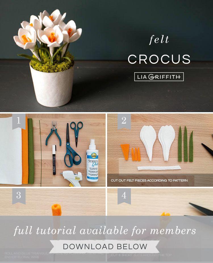 Felt Crocus Flowers - Lia Griffith