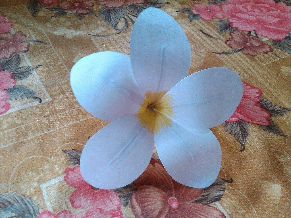 Paper Crafts Flower Frangipani Plumeria Eezhachempakam Paper
