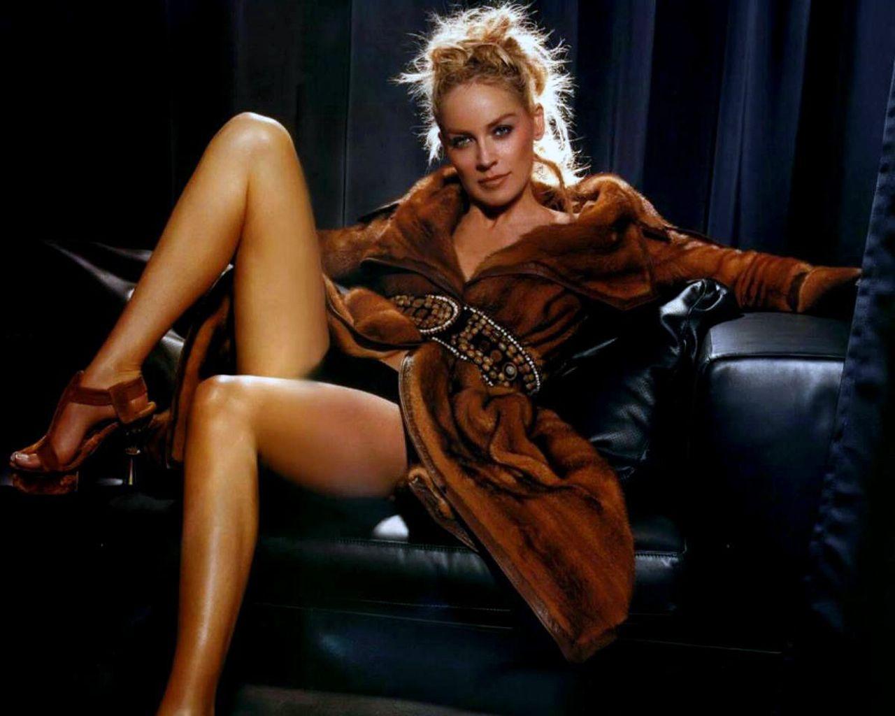 Celebrity Hot Image: Sharon Stone